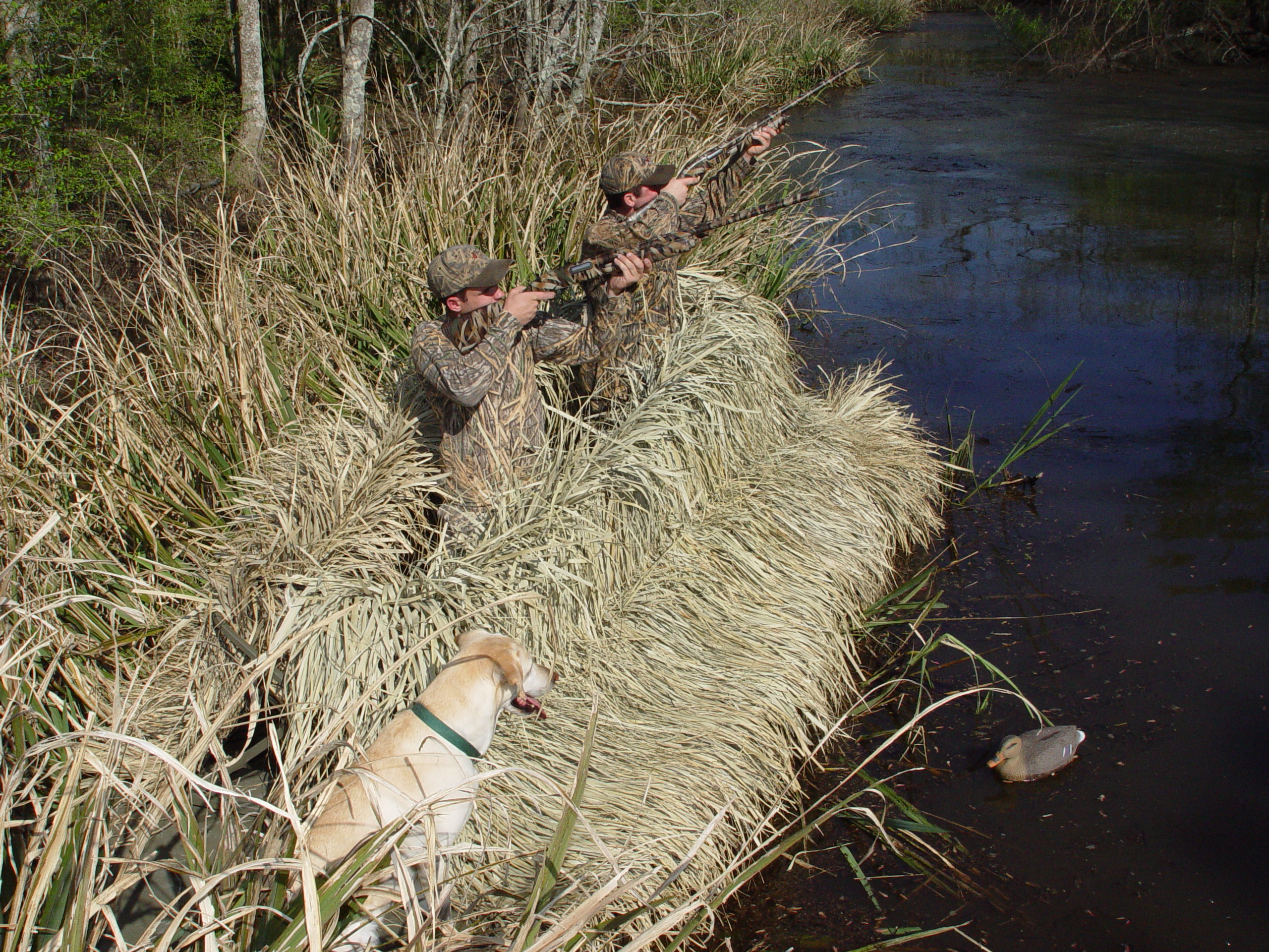 tag sale boat homemade myhomedesign win for blinds tracker boats grizzly duck hunting blind